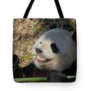 Panda Bear Showing His Teeth As He Munches On Bamboo Tote Bag