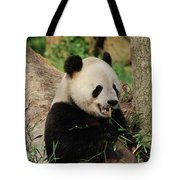 Panda Bear With Teeth Showing While He Was Eating Bamboo Tote Bag