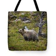 Panda In Many Glacier Tote Bag