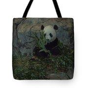 Panda Lunch Tote Bag