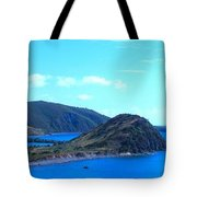 Panhandle Tote Bag