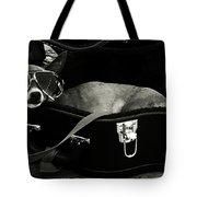 Panhandling Dog Tote Bag by Julie Niemela