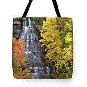 Panorama Fall Color Chapel Falls Upper Penninsula Mi Tote Bag