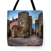 Panorama Of Ancient Roman Gate And Placa Nova In The Morning, Ba Tote Bag