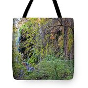 Panorama Of Gorman Falls At Colorado Bend State Park - Lampasas Texas Hill Country Tote Bag