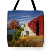 Panorama Of New Modern Building At Toronto Botanical Garden In E Tote Bag