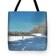 Panorama Of Winter Park Tote Bag