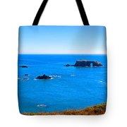 Panoramic California Coast Tote Bag