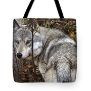 Panoramic Gray Wolf Yukon Tote Bag