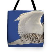 Panoramic Prairie Snowy Owl  Tote Bag