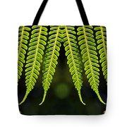 Panoramic Veil Of Ferns Tote Bag