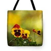 Pansies In The Autumn Glow Tote Bag