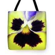 Pansy 09 - Thoughts Of You Tote Bag