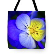 Pansy Close-up Square Tote Bag