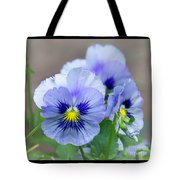 Pansy Flowers Tote Bag