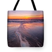 Panther Beach Tote Bag