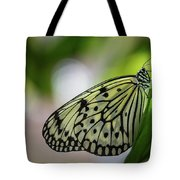 Paper Kite Butterfly- 2 Tote Bag