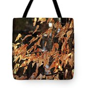 Papery Beech Leaves Tote Bag