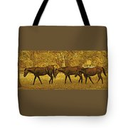 Parade In The Shade On A Hot Afternoon Tote Bag