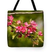 Paradise Apples Flowers Tote Bag