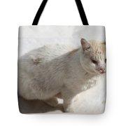 Paradise Dweller Tote Bag