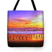 Paradise Found, Huntington Beach, California, Catalina Island Tote Bag