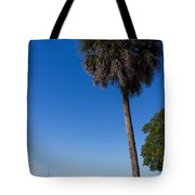 Paradise In Sarasota, Fl Tote Bag by Michael Tesar