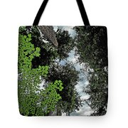 Paradise To Lovers Of Big Trees - Olympic National Park Wa Tote Bag by Christine Till