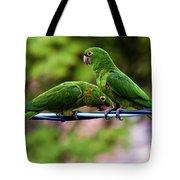 Parakeet Couple Tote Bag