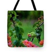 Parakeet South Maui Tote Bag