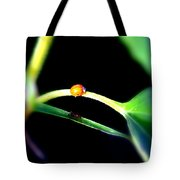 Parallel Paths Tote Bag