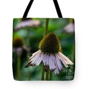 Parched Purple Petals Tote Bag