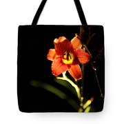 Pardon Me At Night Tote Bag