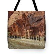 Paria River In Paria Canyon-vermillion Cliffs Wilderness Tote Bag