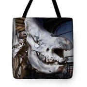 Paris Gallery Of Paleontology 3 Tote Bag