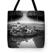Paris Versailles . Tote Bag