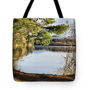 Park And View Tote Bag