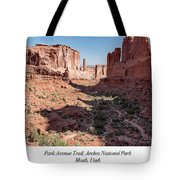 Park Avenue Trail, Arches National Park, Moab, Utah Tote Bag