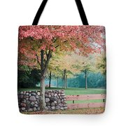 Park In Autumn/fall Colors Tote Bag