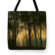 In The Park . Tote Bag