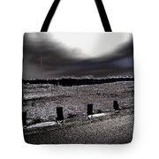 Park In The Moonlight Tote Bag