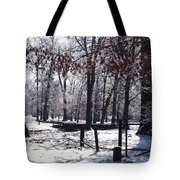Park In The Snow Tote Bag