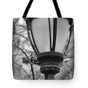 Park Light Tote Bag