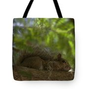 Park Ranger Tote Bag by Sean Green