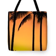 Park Stretch Tote Bag