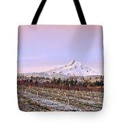 Parkdale Dawn Tote Bag