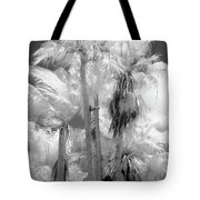 Parking Lot Palms 1 1 Tote Bag
