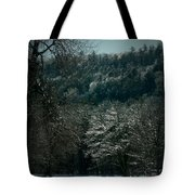 Parks Winter Glory Tote Bag