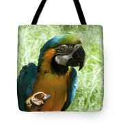Parrot Eating Nut Tote Bag
