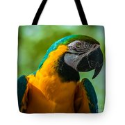 Parrot Face Tote Bag